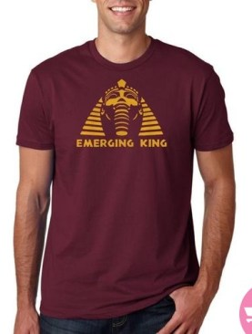 Egyptian tombs t-shirt-Maroon.