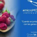 """Arranca """"microMOOCCA2"""" ciencia y alimentos"""