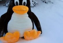 Best Linux distro for developers in 2021