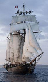 Stolzes Schiff mit guten Segeleigenschaften. © Activ of London