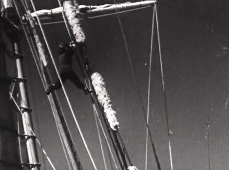 Ohne Netz und doppelten Boden. Der vierjährige Warwick klettert in der Takelage herum.