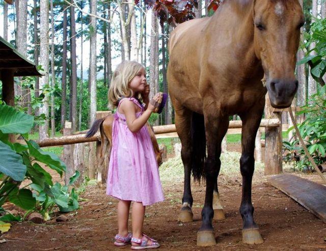 Das Leben geht weiter. Besuch einer Pferde-Ranch. © Eitzinger