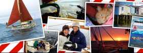 Arktis, Eisberg, Iceberg, Glück, Natur