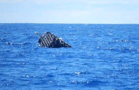 Umweltverschmtzung, Meeresverschmutzung