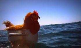 Solo-Ausflug im Beiboot © soudée