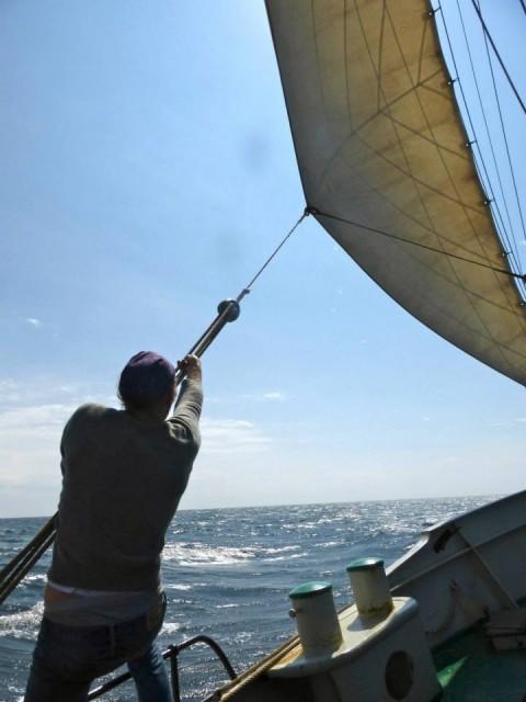 Frachtsegeln, Linienverkehr, Segelreederei Hass, Pleite