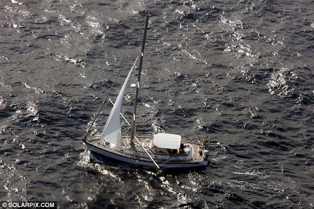 Kollision, Wal, Schiff sinkt