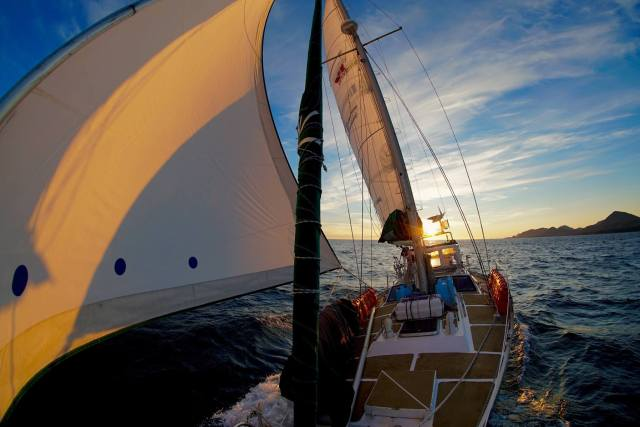 Huhn, Langfahrt, voyage Yvenic
