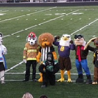 What do School Colors and Mascots Represent?