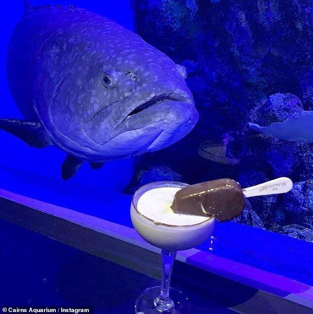 Уральские ученые: у рыб тоже бывает депрессия