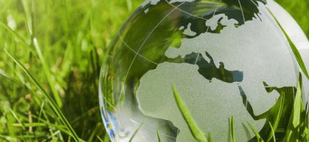 Крупные IT-корпорации взялись помогать планете. Зачем они это делают?