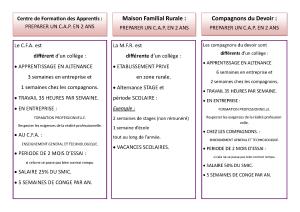 organigramme-et-apres_page_5
