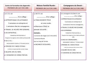organigramme-et-apres_page_6
