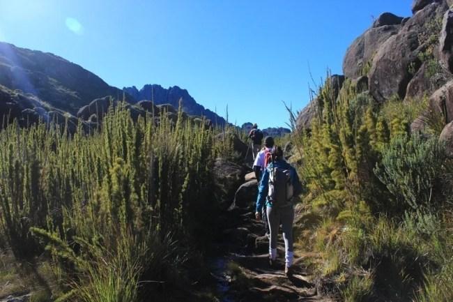 Primeiros passos em meio aos campos de altitude do Parque Nacional Itatiaia