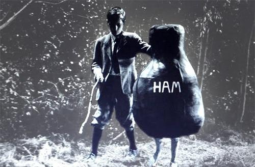 Ham and Hope » Latter-day Saint Blogs » NothingWavering.org