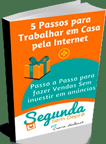 6aec2093fe6 Baixe gratuitamente o E-book 5 Passos para Trabalhar em Casa pela Internet  que também contém um Super Bônus  Passo a Passo para Fazer Vendas Sem  investir em ...