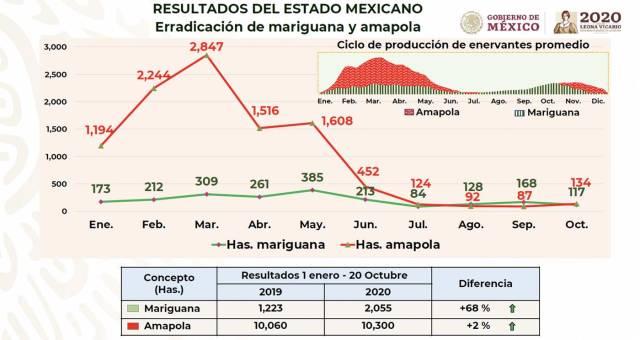 Resultados del Estado Mexicano