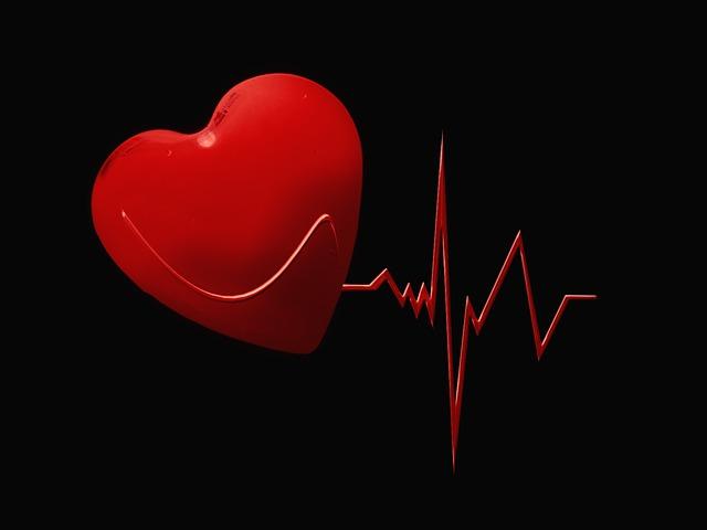 Corazón y linea de vida