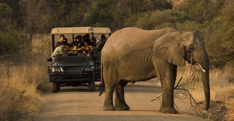 seguro viagem africa do sul