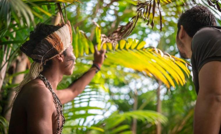 viagem para Manaus