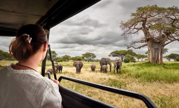 contratar seguro viagem africa