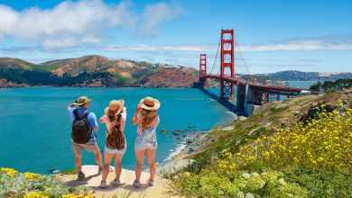 VMZ seguro viagem