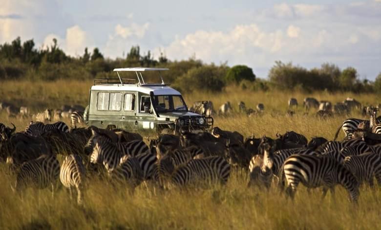 Melhor seguro viagem África
