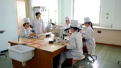 Photo of بالمستندات..الصحة المصرية تَحظُر تشغيل عمالة كوريا الشمالية في المنشأت الطبية