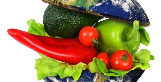 Diet Ideal Untuk Bumi Yang Sehat