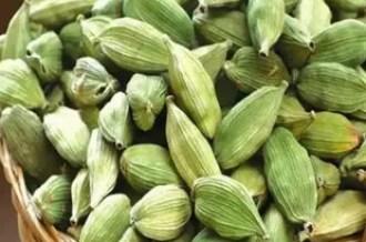 cardamom in hindi