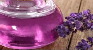 Lavender Oil in Hindi