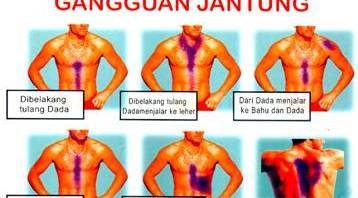 Pengobatan Herbal Maag & Rematic Jantung