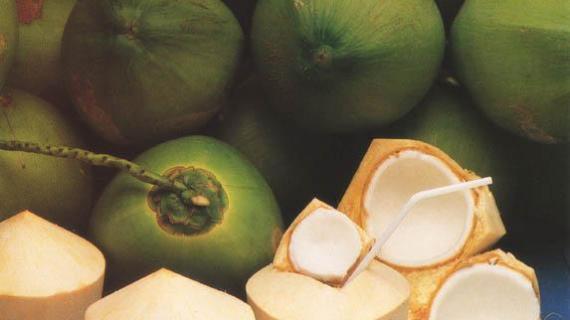 Kacang Hijau dan Penyakit
