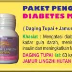 Yakon, daun anti diabetes untuk atasi kencing manis