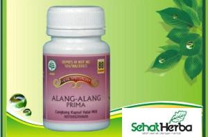 Obat Herbal Alang Alang