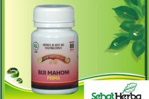 Obat Herbal Biji Mahoni
