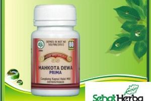 Obat Herbal Mahkota Dewa