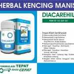 Diacare Hiu Obat Herbal Kencing Manis / Diabetes militus (DM)