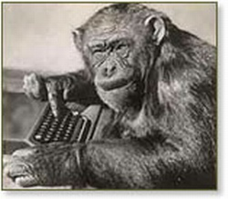 monkey at keyboard