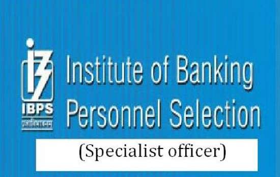 Ibps Specialist Officer 2015 Notification Pdf