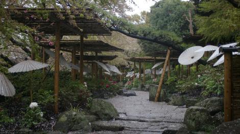 Kamakura im Regen (April 2008)