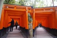 Inari Shrine Double Torii Row
