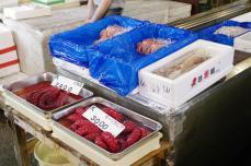 Tsukiji2014 092