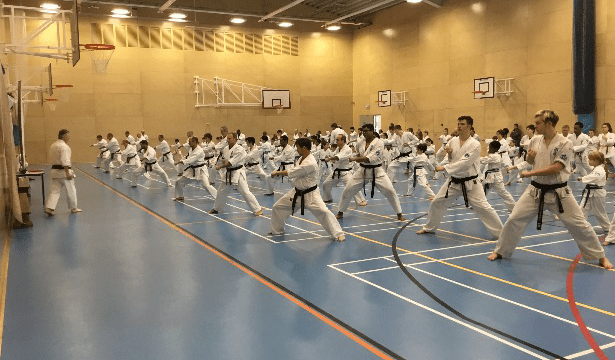 Seido UK Gashaku November 2018