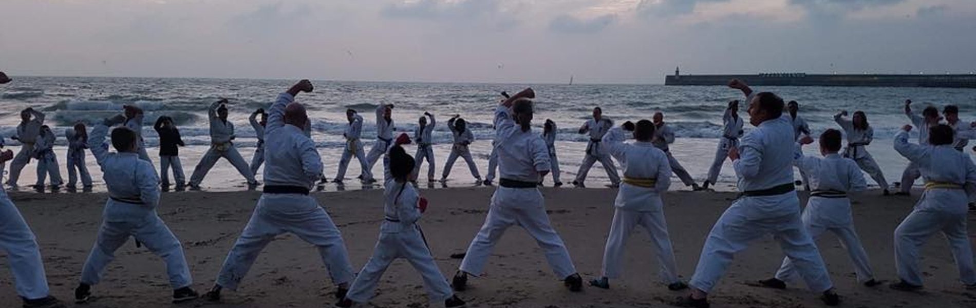 World Seido Karate