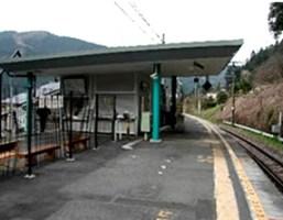 御岳山 クワガタ 川井駅11