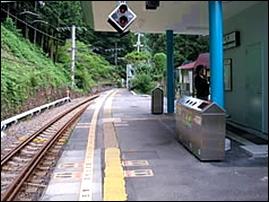 12東京ミヤマクワガタ