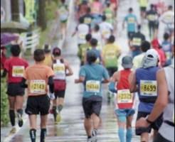 12ハーフマラソンぶっつけ