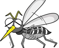 活動を弱める蚊