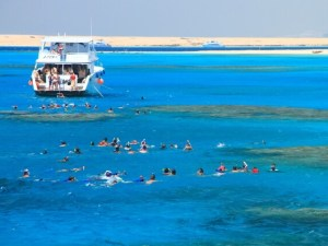 Snorkeling at Red Sea